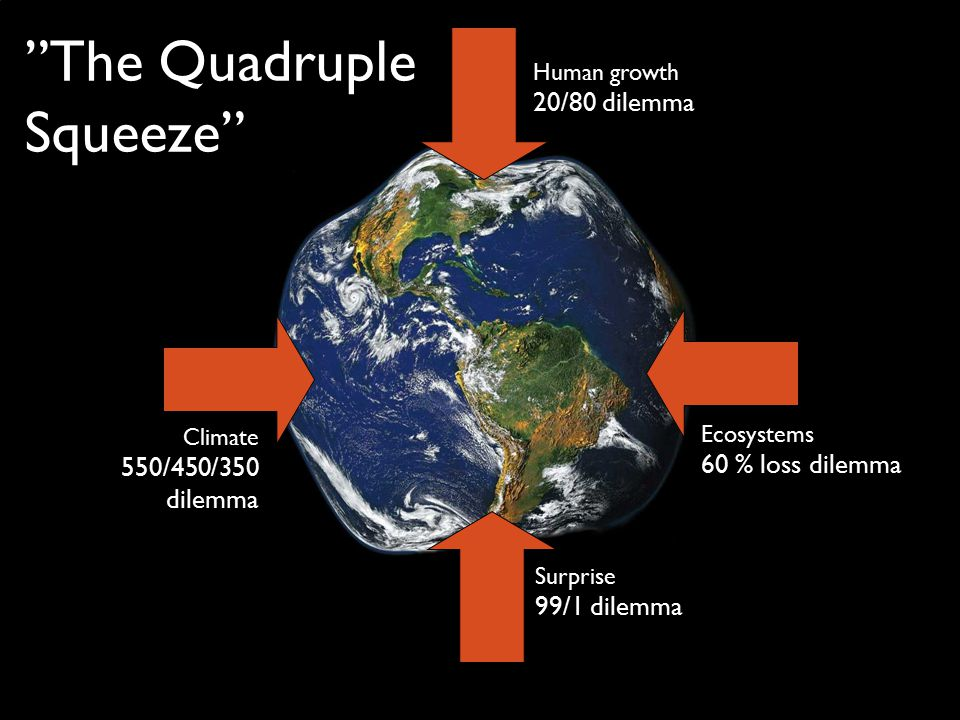Human growth 20/80 dilemma Ecosystems 60 % loss dilemma Climate 550/450/350 dilemma Surprise 99/1 dilemma The Quadruple Squeeze