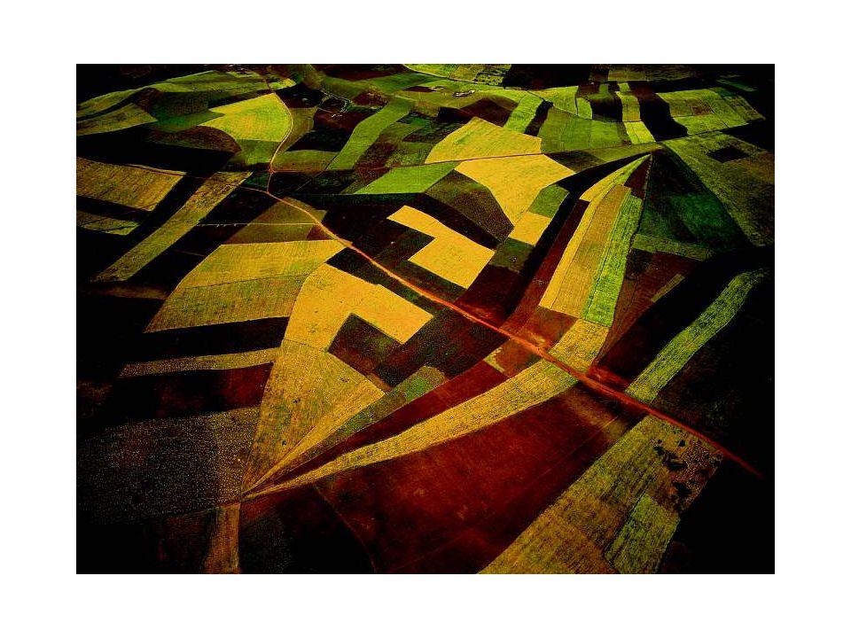 Market Allocation AH LLL  L A M A L $/ha $/ Ag land demand Urban land demand