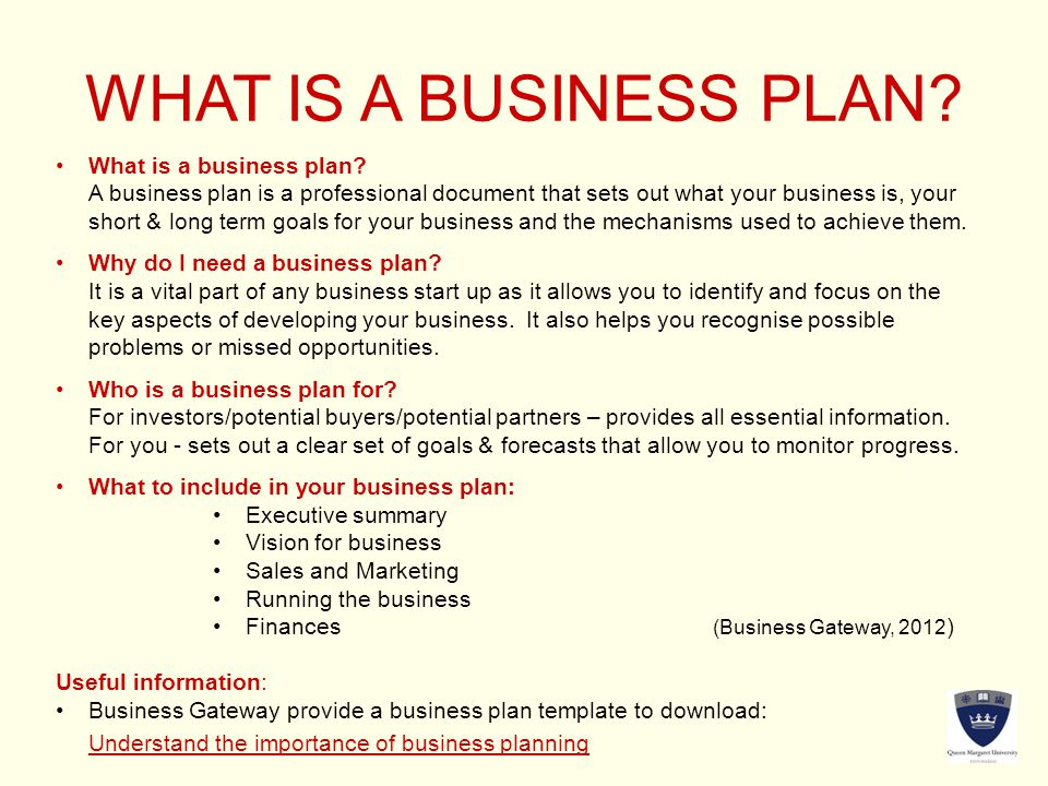 WHAT IS A BUSINESS PLAN. What is a business plan.