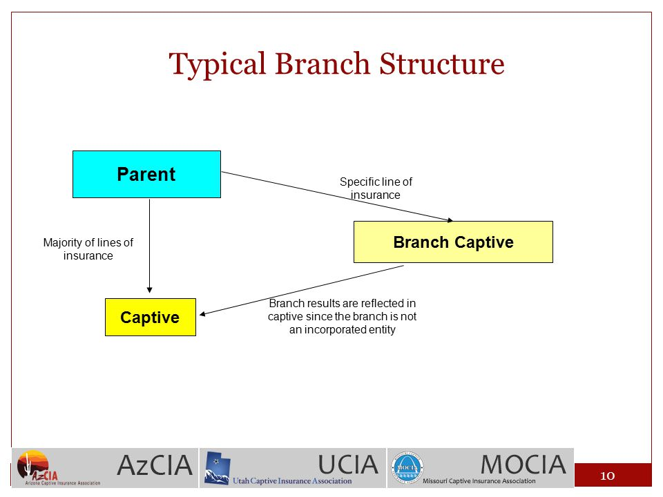 Typical Branch Structure Parent Captive Majority of lines of insurance Specific line of insurance Branch Captive Branch results are reflected in capti