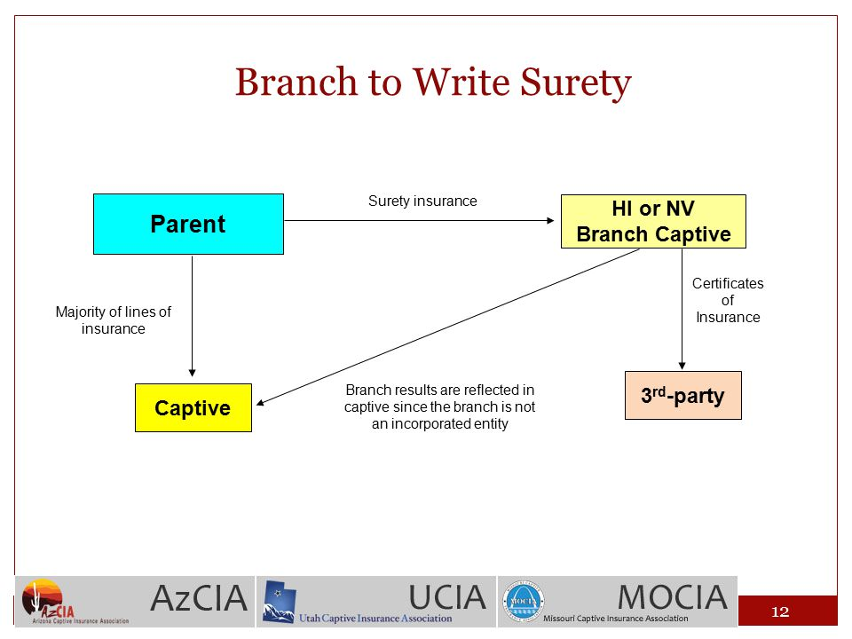 Branch to Write Surety Parent Captive Majority of lines of insurance Surety insurance HI or NV Branch Captive Branch results are reflected in captive