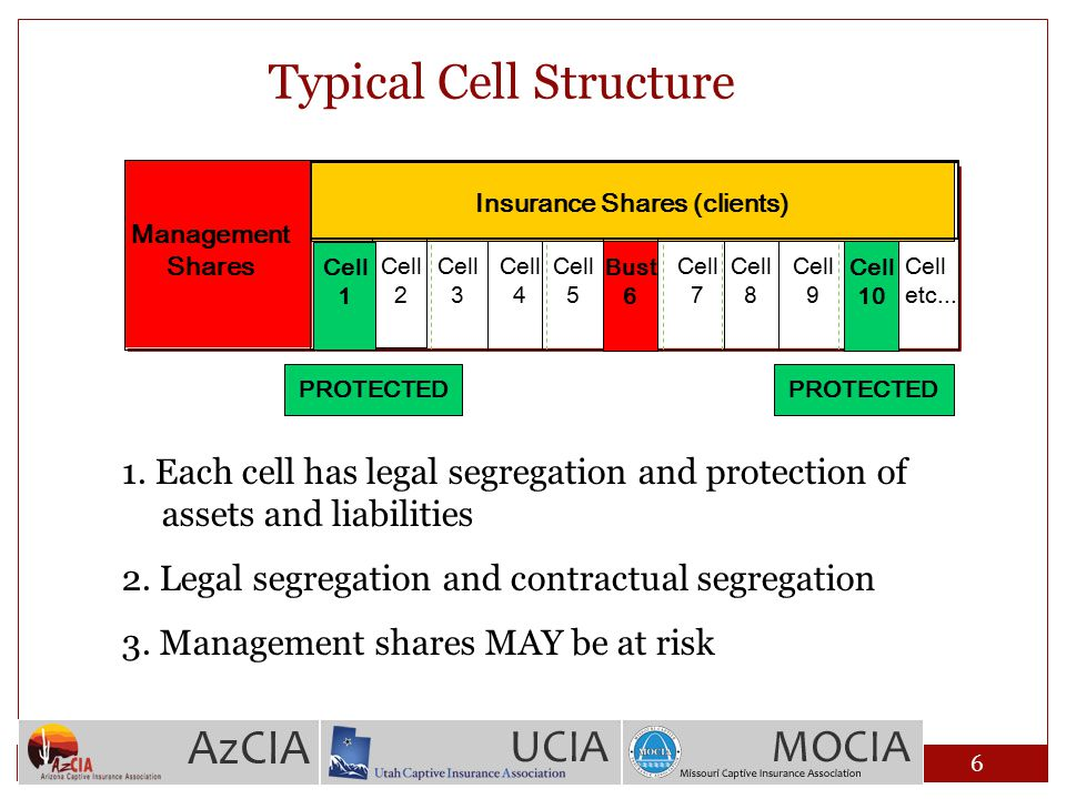Typical Cell Structure Cell 1 Cell 2 Cell etc... Management Shares Cell 3 Cell 4 Cell 5 Cell 6 Cell 7 Cell 8 Cell 9 Cell 10 Insurance Shares (clients)