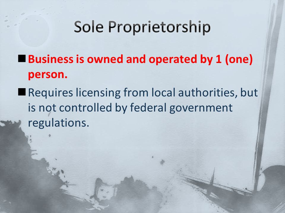 Business is owned and operated by 1 (one) person. Requires licensing from local authorities, but is not controlled by federal government regulations.