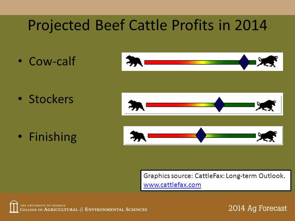 Projected Beef Cattle Profits in 2014 Cow-calf Stockers Finishing Graphics source: CattleFax: Long-term Outlook.