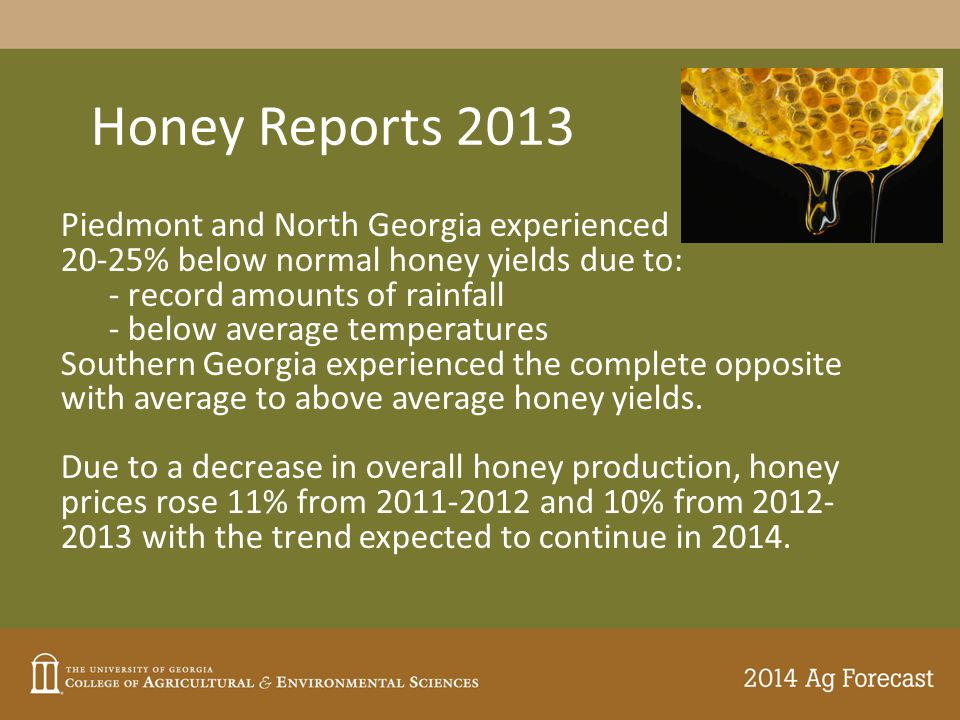 Honey Reports 2013 Piedmont and North Georgia experienced 20-25% below normal honey yields due to: - record amounts of rainfall - below average temperatures Southern Georgia experienced the complete opposite with average to above average honey yields.