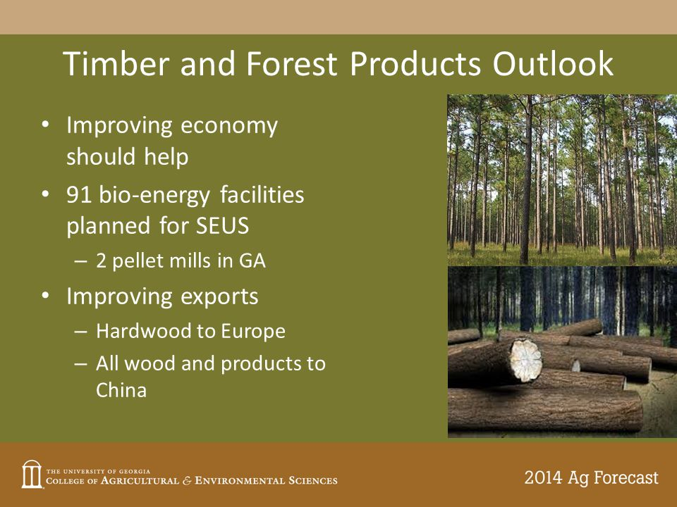 Timber and Forest Products Outlook Improving economy should help 91 bio-energy facilities planned for SEUS – 2 pellet mills in GA Improving exports – Hardwood to Europe – All wood and products to China