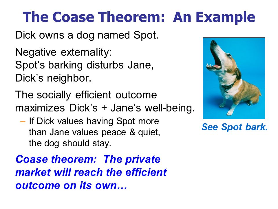 The Coase Theorem: An Example Dick owns a dog named Spot. Negative externality: Spot's barking disturbs Jane, Dick's neighbor. The socially efficient