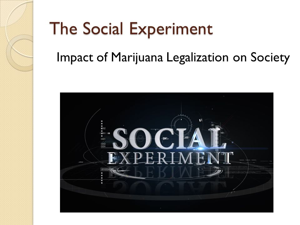 The Social Experiment Impact of Marijuana Legalization on Society