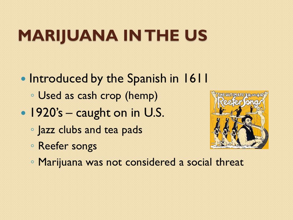 Introduced by the Spanish in 1611 ◦ Used as cash crop (hemp) 1920's – caught on in U.S.