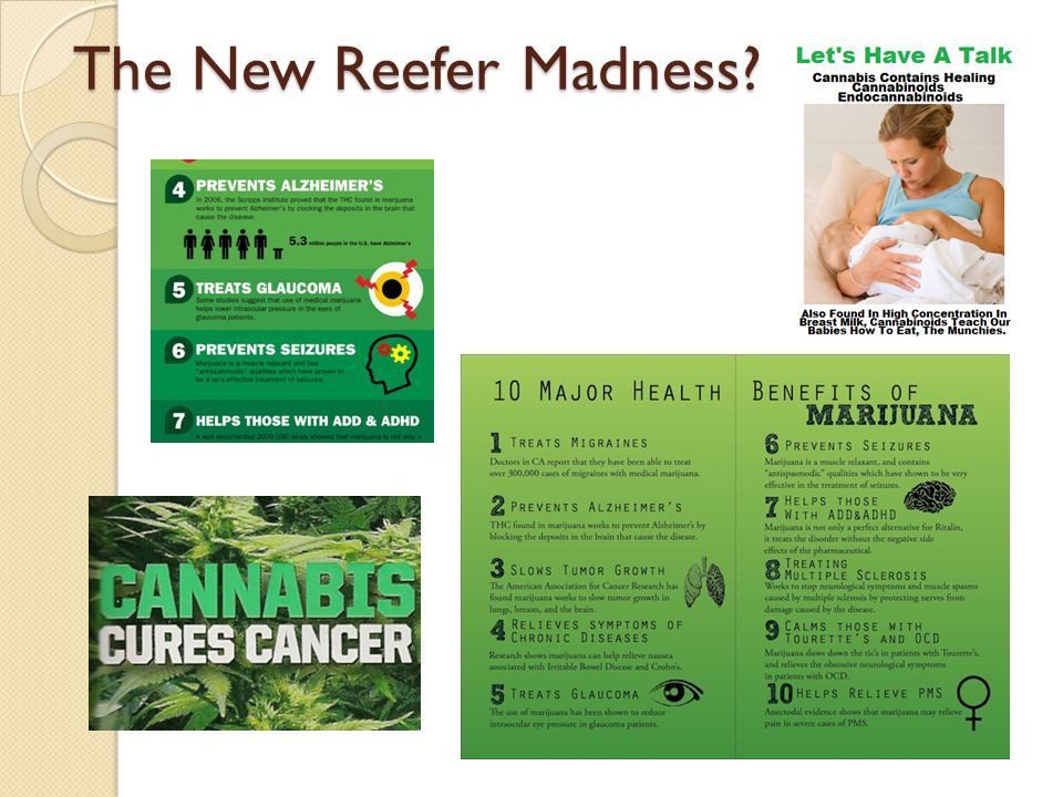 The New Reefer Madness