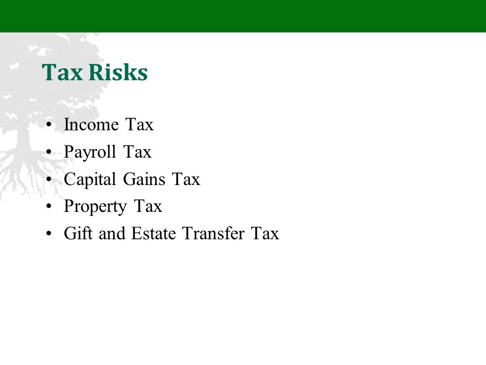 Tax Risks Income Tax Payroll Tax Capital Gains Tax Property Tax Gift and Estate Transfer Tax
