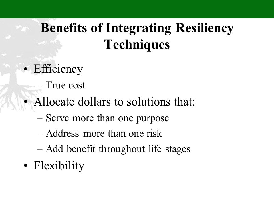 Benefits of Integrating Resiliency Techniques Efficiency –True cost Allocate dollars to solutions that: –Serve more than one purpose –Address more than one risk –Add benefit throughout life stages Flexibility