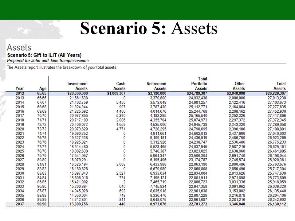 Scenario 5: Assets