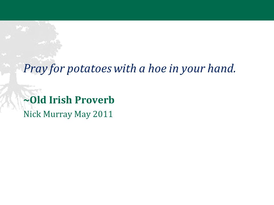 Pray for potatoes with a hoe in your hand. ~Old Irish Proverb Nick Murray May 2011