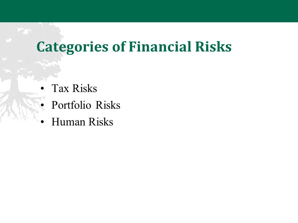 Categories of Financial Risks Tax Risks Portfolio Risks Human Risks
