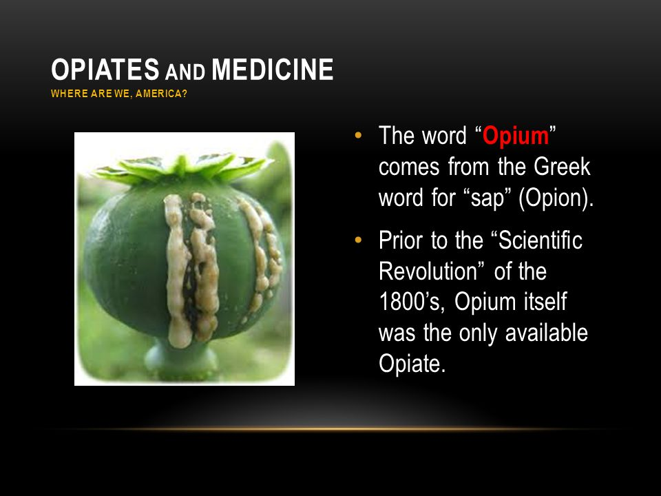 The word Opium comes from the Greek word for sap (Opion).