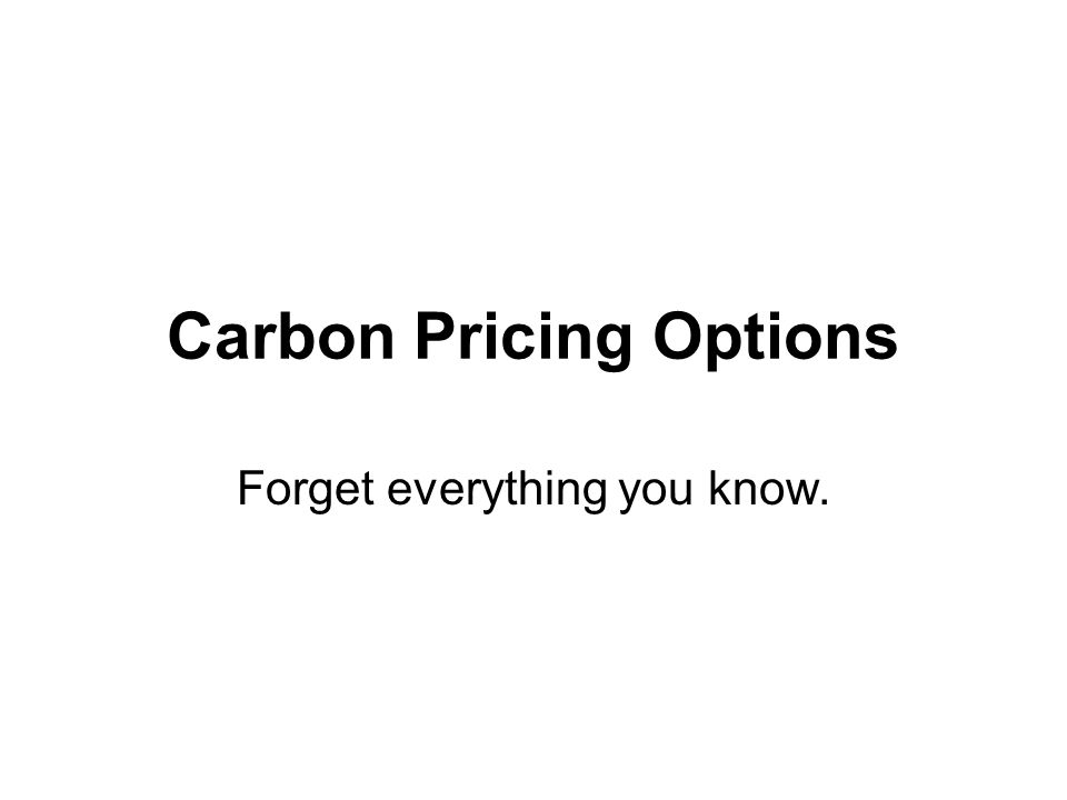 Carbon Pricing Options Forget everything you know.