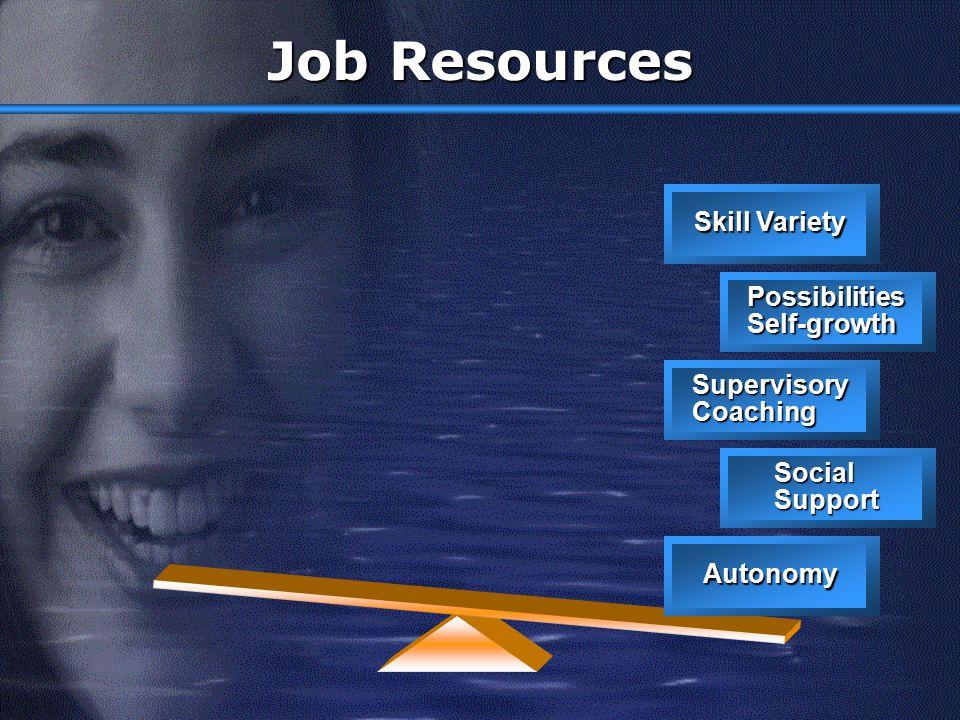 Job Demands Work Pressure Emotional Demands Work times Work-Home Role conflict