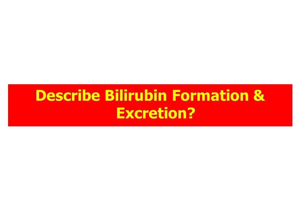 Describe Bilirubin Formation & Excretion?