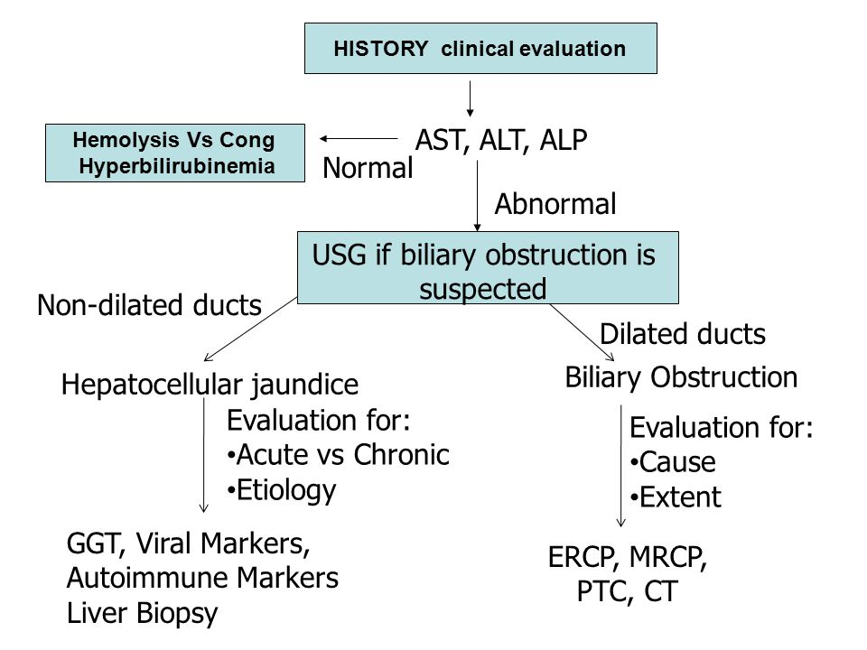 HISTORY clinical evaluation Hemolysis Vs Cong Hyperbilirubinemia Normal Abnormal AST, ALT, ALP USG if biliary obstruction is suspected Non-dilated ducts Dilated ducts Hepatocellular jaundice Biliary Obstruction Evaluation for: Acute vs Chronic Etiology Evaluation for: Cause Extent GGT, Viral Markers, Autoimmune Markers Liver Biopsy ERCP, MRCP, PTC, CT