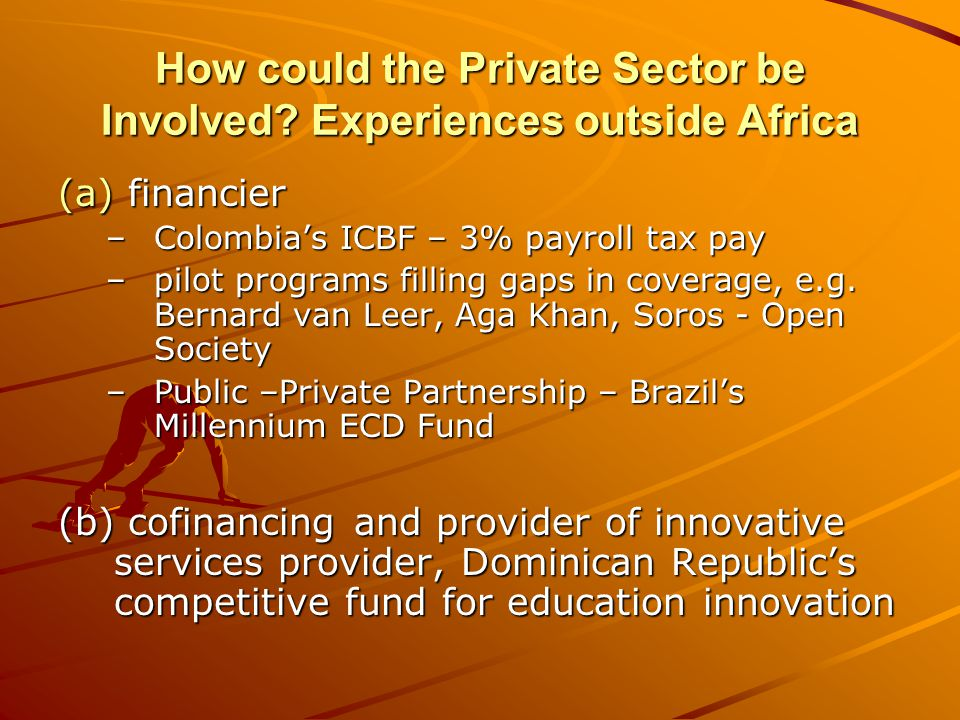 How could the Private Sector be Involved.