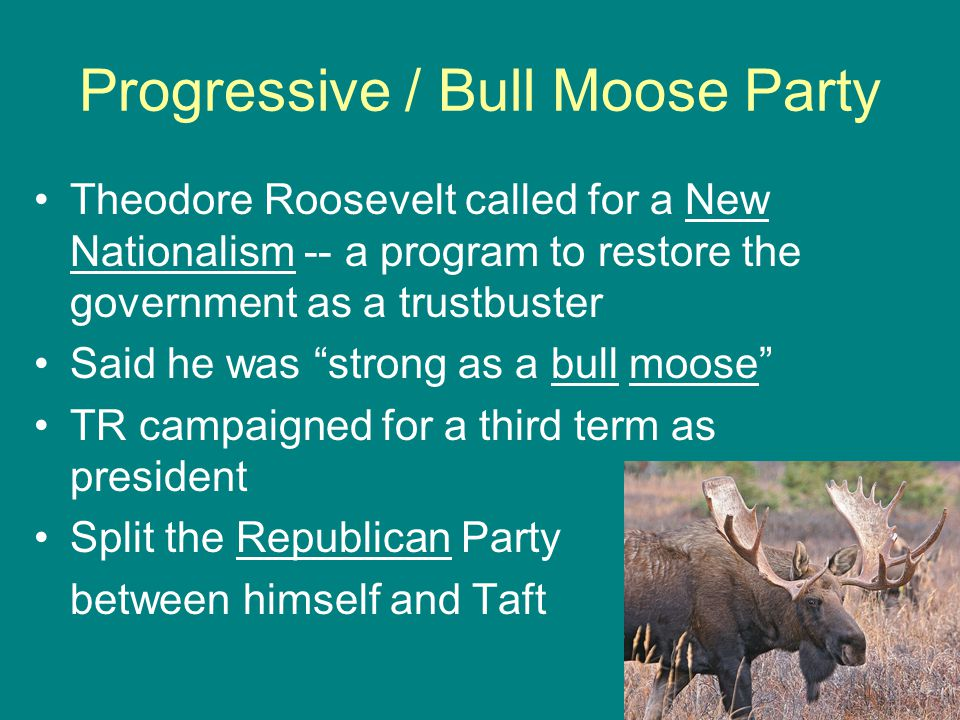 Progressive / Bull Moose Party Theodore Roosevelt called for a New Nationalism -- a program to restore the government as a trustbuster Said he was strong as a bull moose TR campaigned for a third term as president Split the Republican Party between himself and Taft