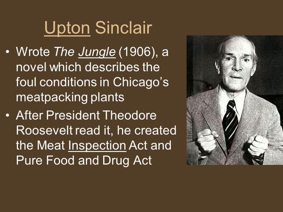 Upton Sinclair Wrote The Jungle (1906), a novel which describes the foul conditions in Chicago's meatpacking plants After President Theodore Roosevelt