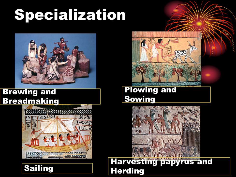 Specialization Brewing and Breadmaking Plowing and Sowing Sailing Harvesting papyrus and Herding