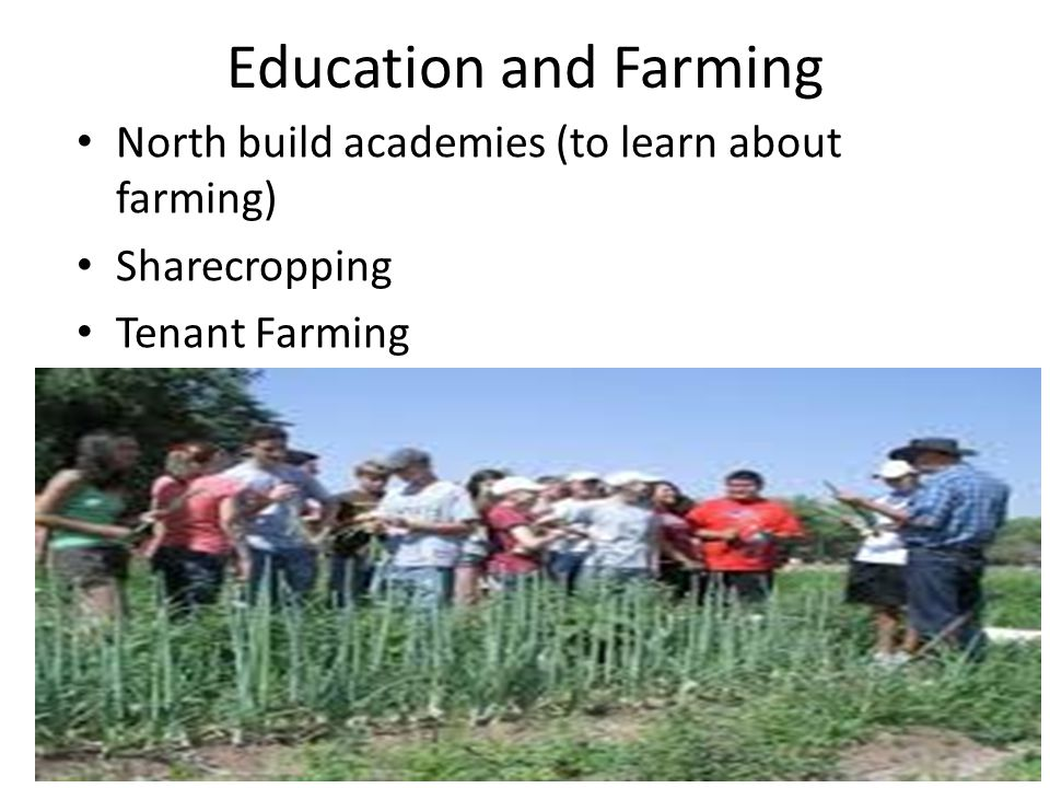 Education and Farming North build academies (to learn about farming) Sharecropping Tenant Farming