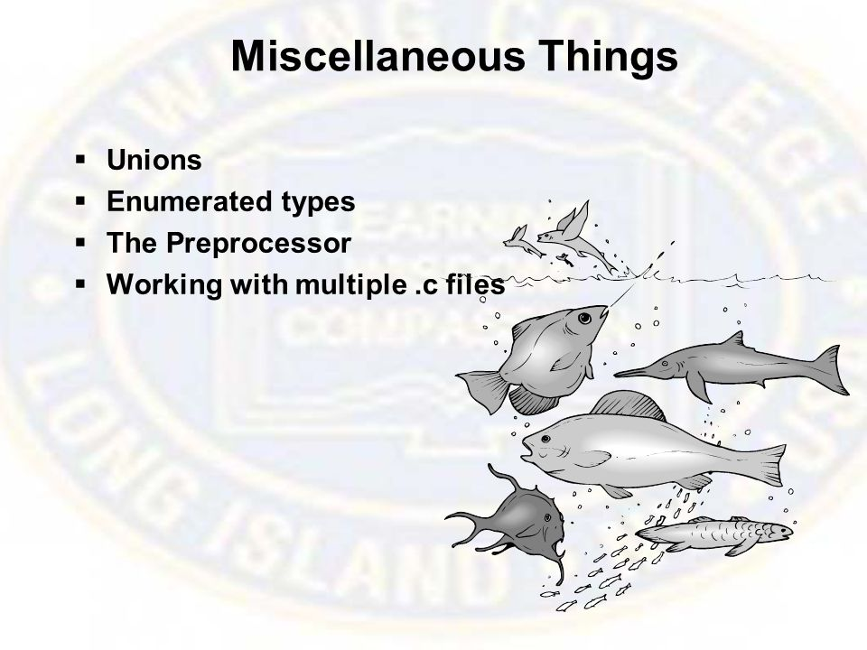 Miscellaneous Things  Unions  Enumerated types  The Preprocessor  Working with multiple.c files