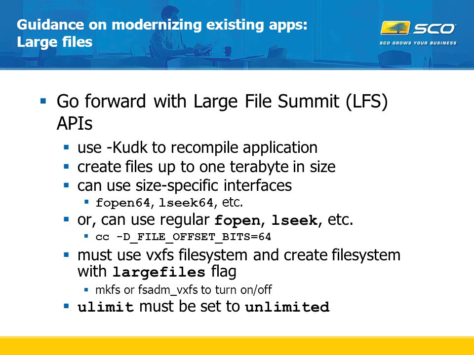 Guidance on modernizing existing apps: Large files  Go forward with Large File Summit (LFS) APIs  use -Kudk to recompile application  create files up to one terabyte in size  can use size-specific interfaces  fopen64, lseek64, etc.