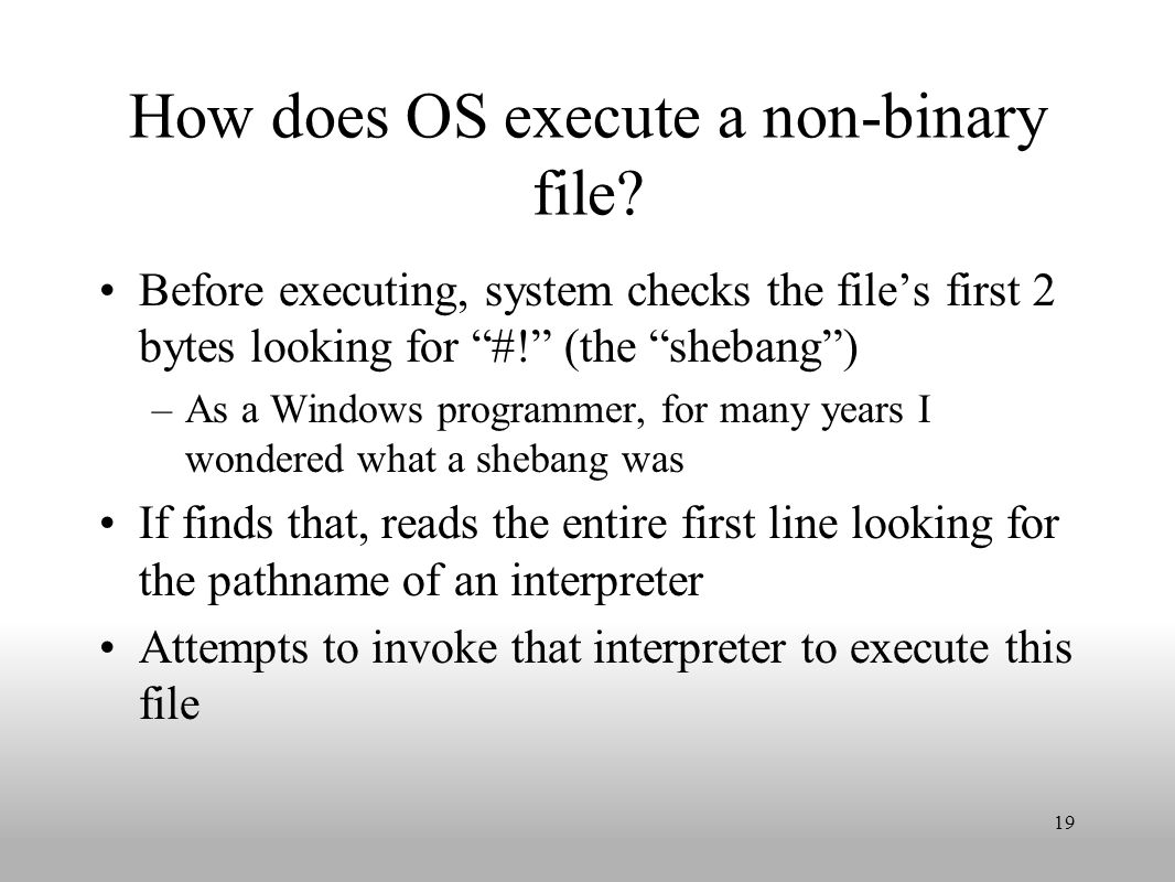 How does OS execute a non-binary file.