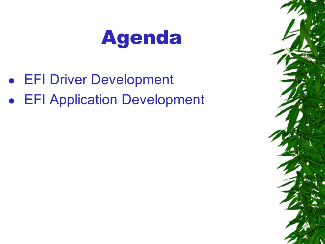 Agenda EFI Driver Development EFI Application Development