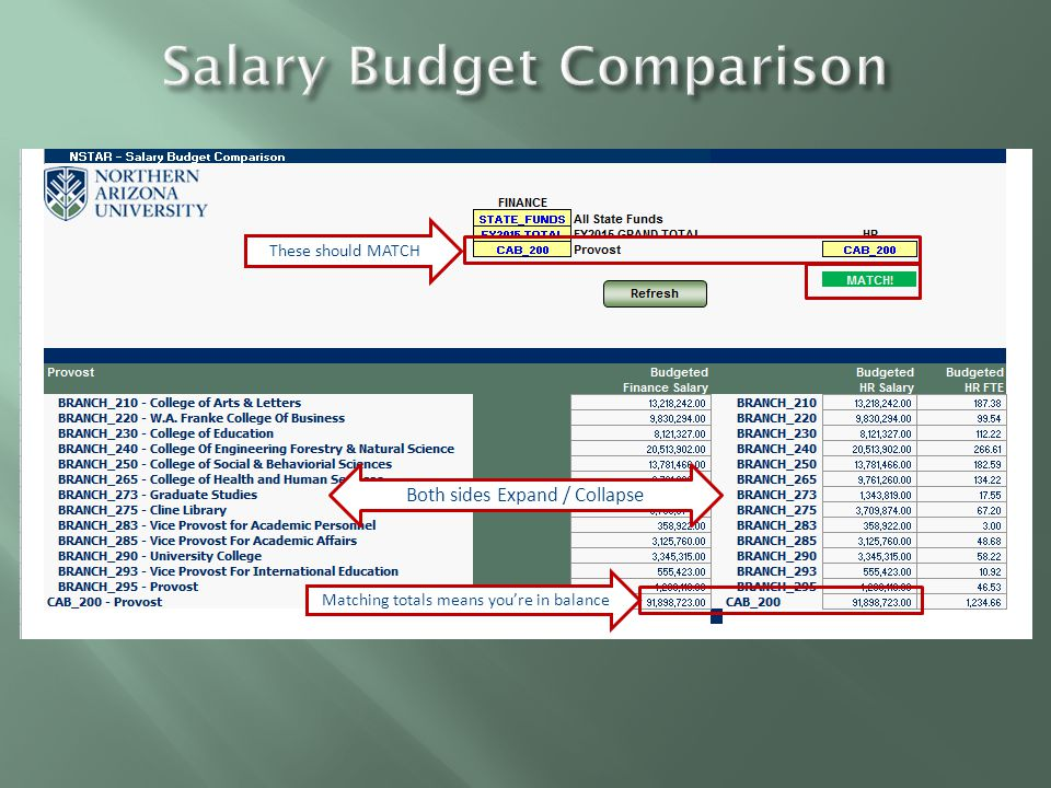 Choose Budget or Actuals Rows and Columns DO NOT Expand or Collapse in this report