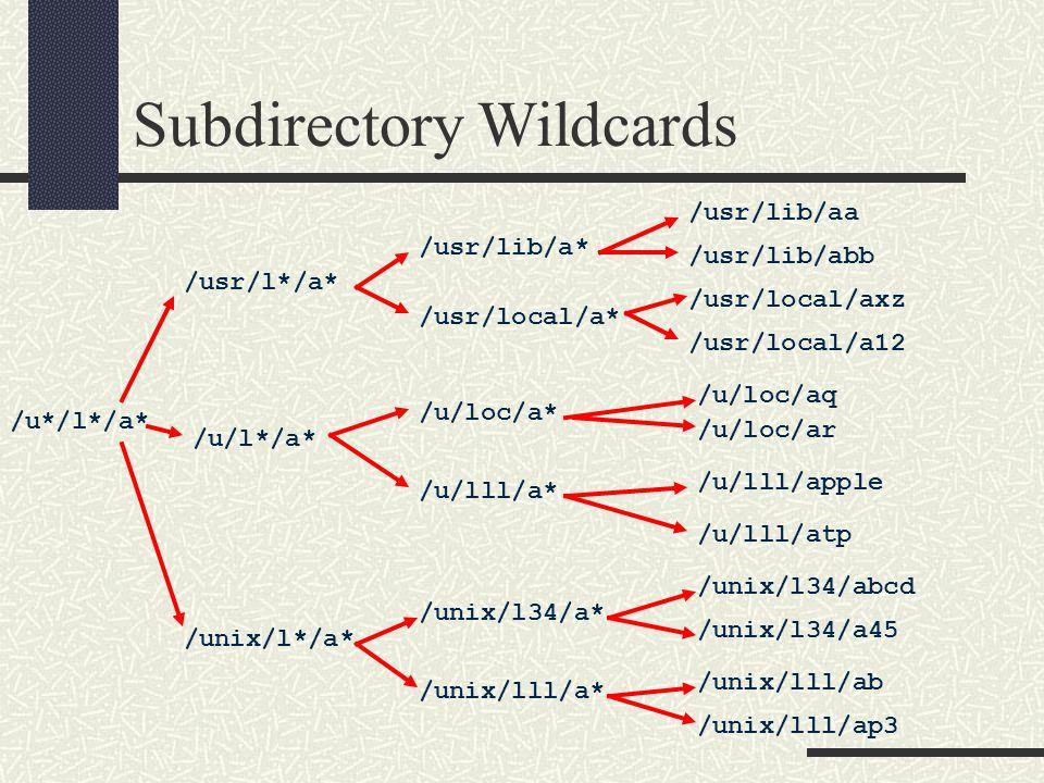 Subdirectory Wildcards /u*/l*/a* /usr/l*/a* /u/l*/a* /unix/l*/a* /usr/lib/a* /usr/local/a* /u/loc/a* /u/lll/a* /unix/lll/a* /usr/lib/aa /usr/lib/abb /usr/local/a12 /u/loc/ar /unix/lll/ap3 /u/lll/atp /unix/l34/a* /unix/lll/ab /unix/l34/a45 /unix/l34/abcd /u/lll/apple /u/loc/aq /usr/local/axz