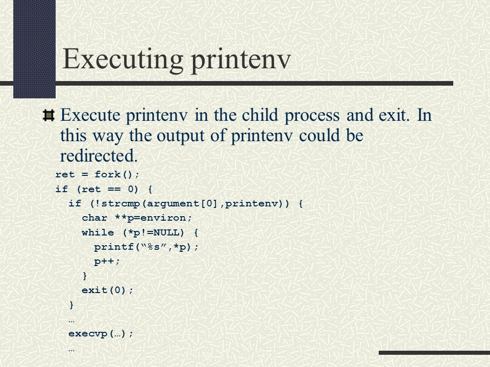 Executing printenv Execute printenv in the child process and exit.