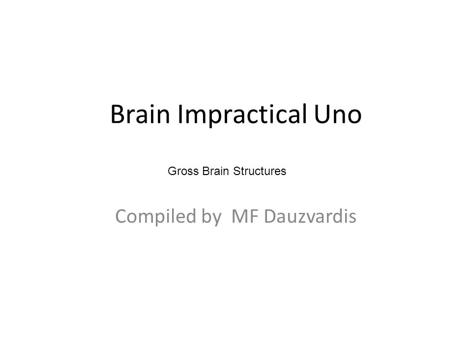 Brain Impractical Uno Compiled by MF Dauzvardis Gross Brain Structures