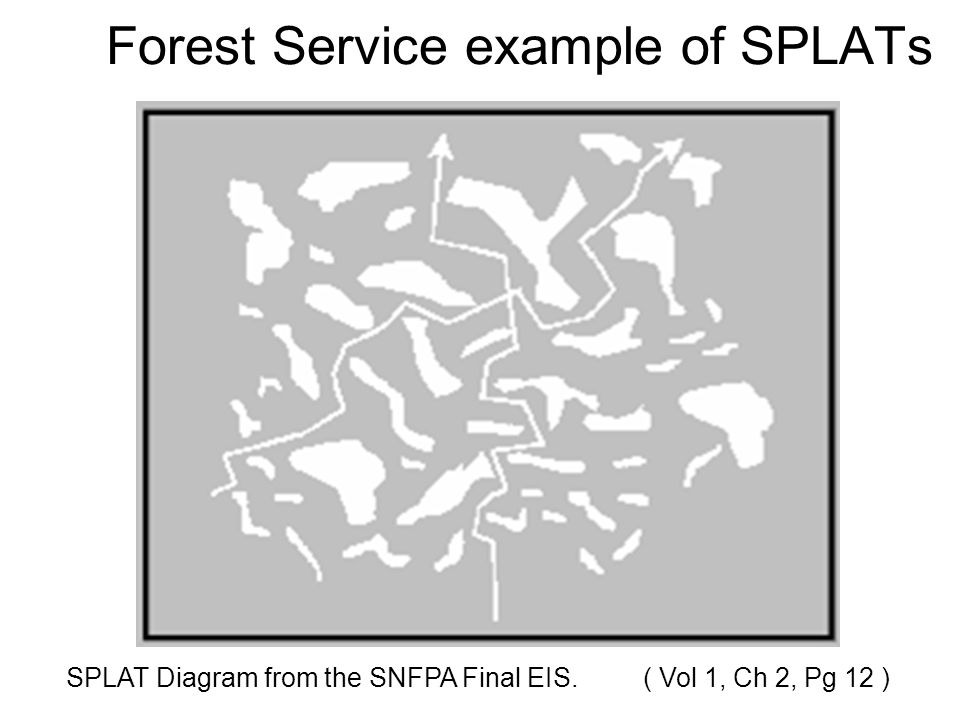 Forest Service example of SPLATs SPLAT Diagram from the SNFPA Final EIS. ( Vol 1, Ch 2, Pg 12 )