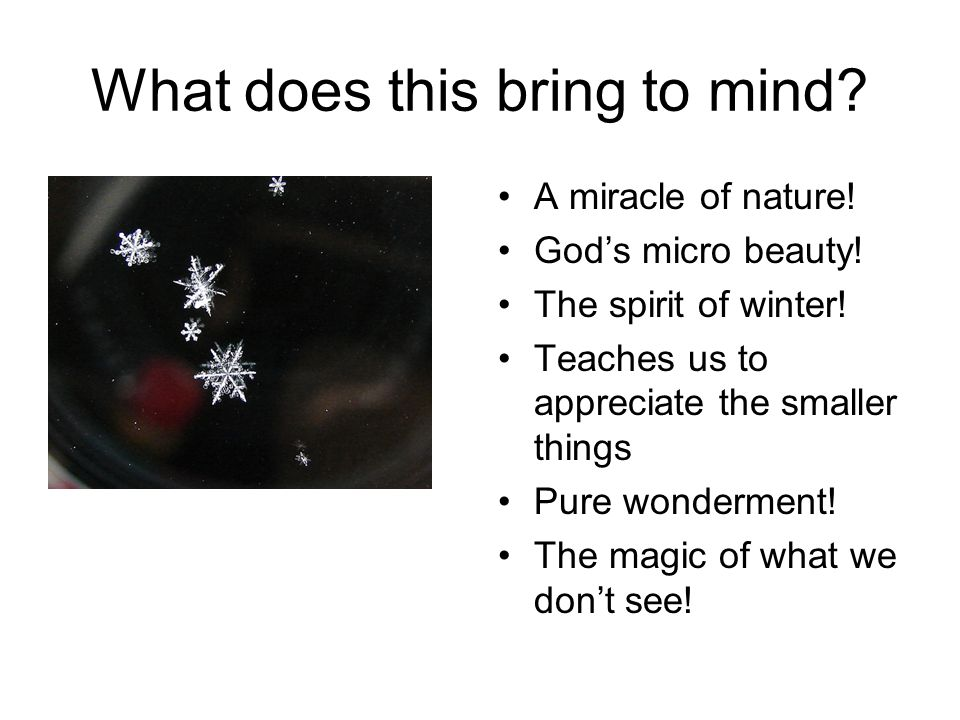 What does this bring to mind? A miracle of nature! God's micro beauty! The spirit of winter! Teaches us to appreciate the smaller things Pure wonderme