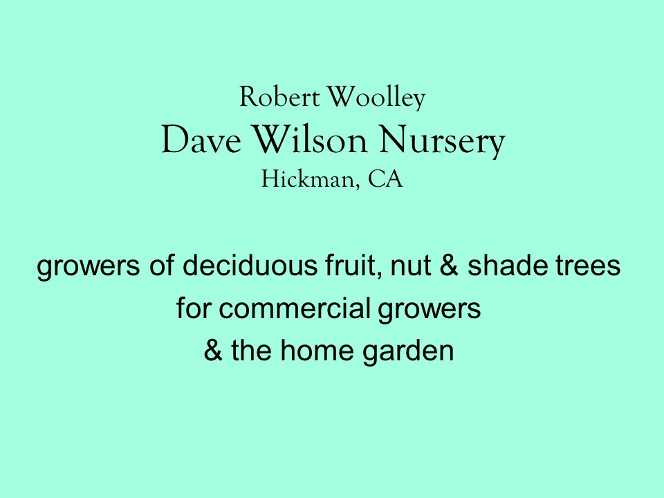 Robert Woolley Dave Wilson Nursery Hickman, CA growers of deciduous fruit, nut & shade trees for commercial growers & the home garden