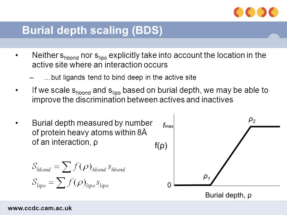 www.ccdc.cam.ac.uk Burial depth scaling (BDS) Neither s hbond nor s lipo explicitly take into account the location in the active site where an interaction occurs –…but ligands tend to bind deep in the active site If we scale s hbond and s lipo based on burial depth, we may be able to improve the discrimination between actives and inactives Burial depth measured by number of protein heavy atoms within 8Å of an interaction, ρ