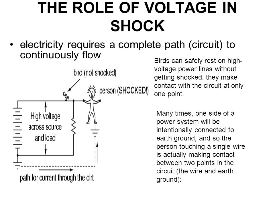THE ROLE OF VOLTAGE IN SHOCK electricity requires a complete path (circuit) to continuously flow Birds can safely rest on high- voltage power lines without getting shocked: they make contact with the circuit at only one point.
