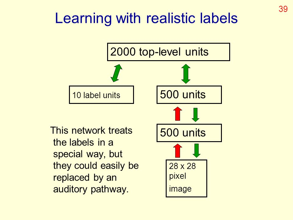 Learning with realistic labels This network treats the labels in a special way, but they could easily be replaced by an auditory pathway. 2000 top-lev
