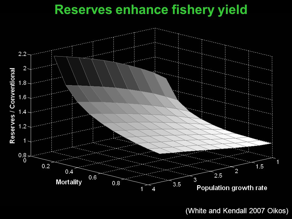 Reserves enhance fishery yield (White and Kendall 2007 Oikos)