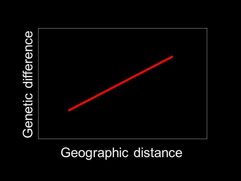 Geographic distance Genetic difference