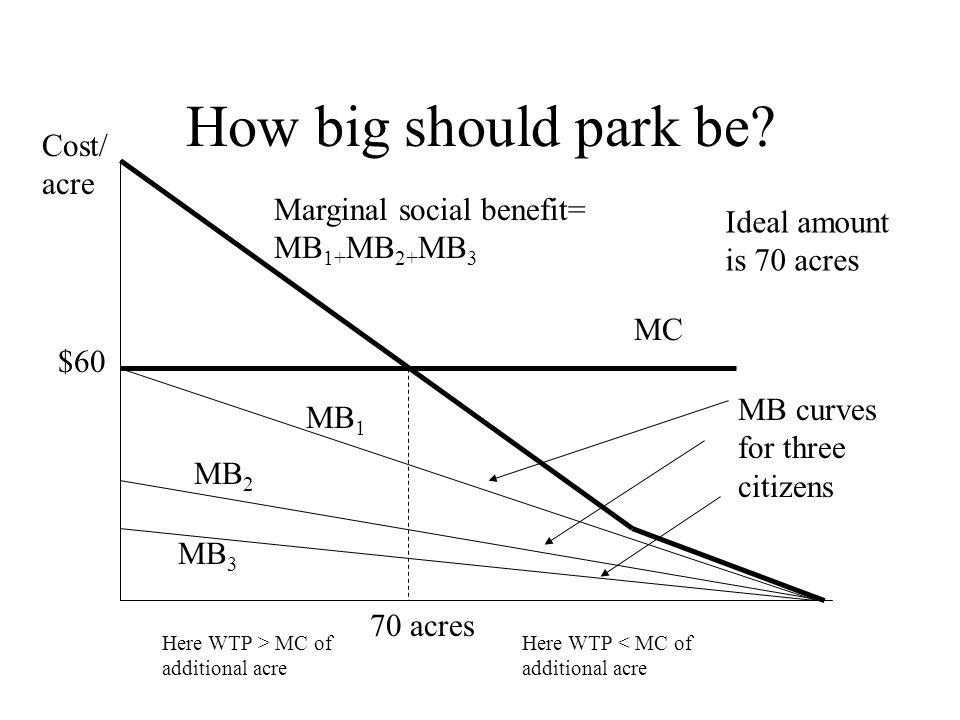 How big should park be.