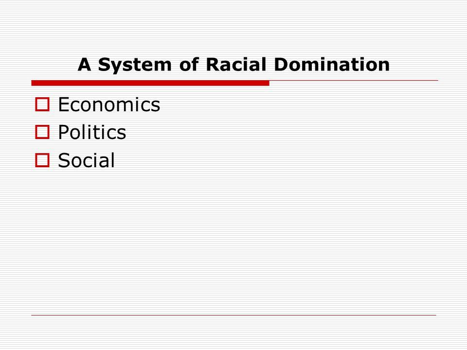A System of Racial Domination  Economics  Politics  Social