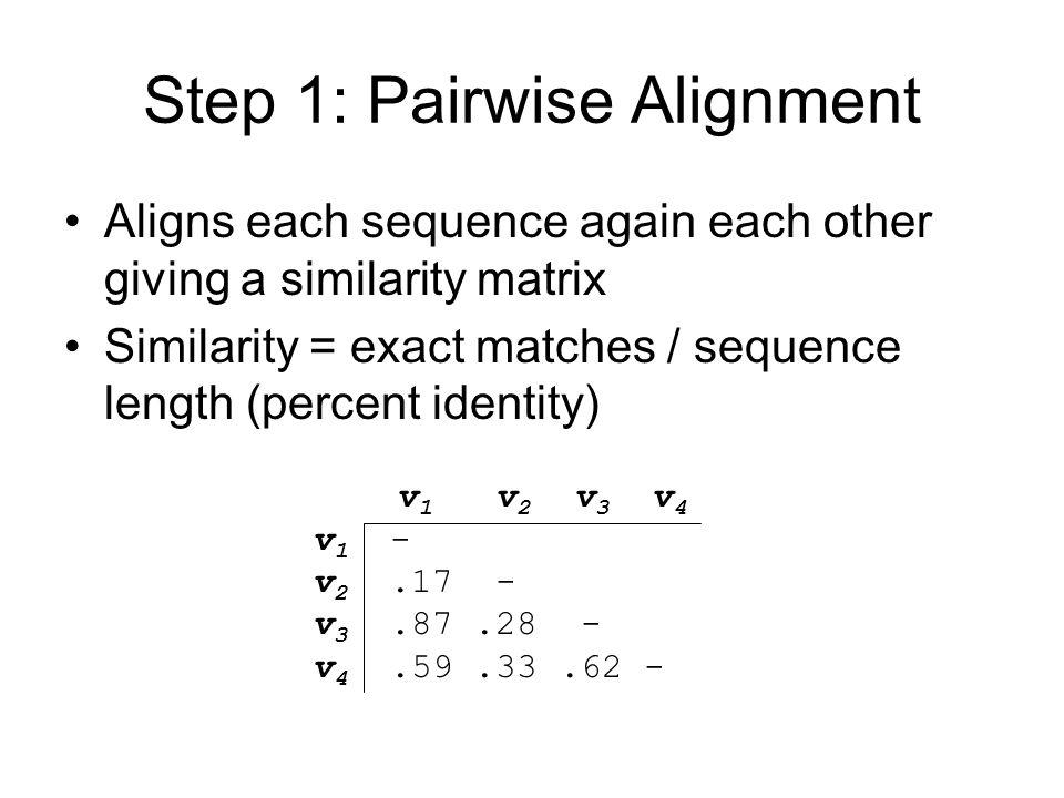 Step 1: Pairwise Alignment Aligns each sequence again each other giving a similarity matrix Similarity = exact matches / sequence length (percent identity) v 1 v 2 v 3 v 4 v 1 - v 2.17 - v 3.87.28 - v 4.59.33.62 -