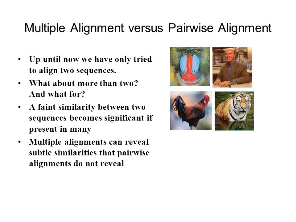 Multiple Alignment versus Pairwise Alignment Up until now we have only tried to align two sequences.