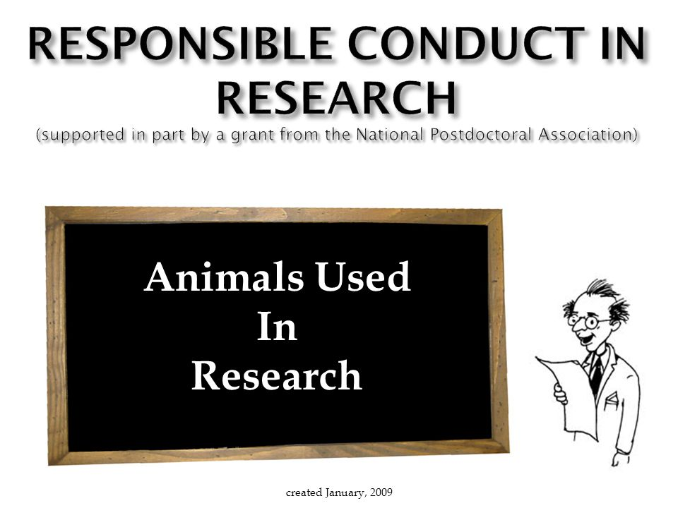 Animals Used In Research created January, 2009